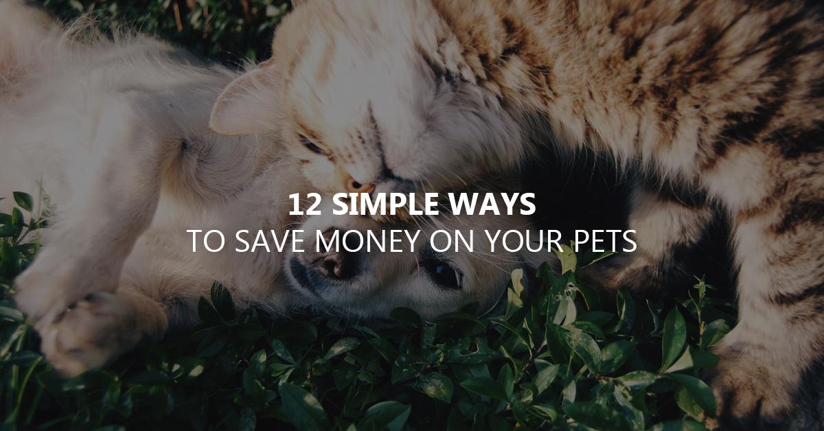 save money on pets